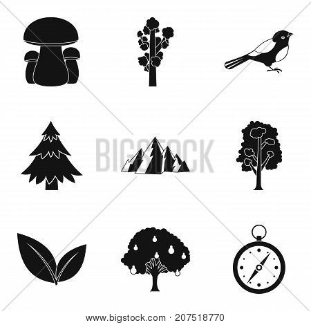 Hunting ground icons set. Simple set of 9 hunting ground vector icons for web isolated on white background