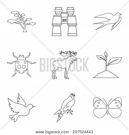 Forest beast icons set. Outline set of 9 forest beast vector icons for web isolated on white background