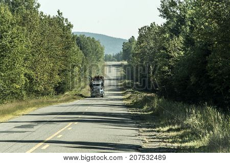 Big Logging truck moving on highway wood from harvest field plant Canada ontario quebec