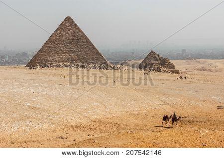 Giza pyramids landscape. Cairo. Desert. Camel. Lanscape