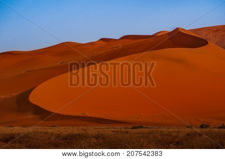 Contrasting Dune in the Afternoon Sun. Namibia Desert, Namibia