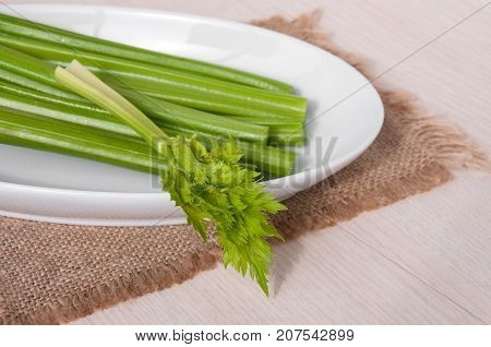 Petiolate Celery In A White Plate On The Table
