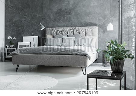 Inspiring Grey Bedroom With Plant