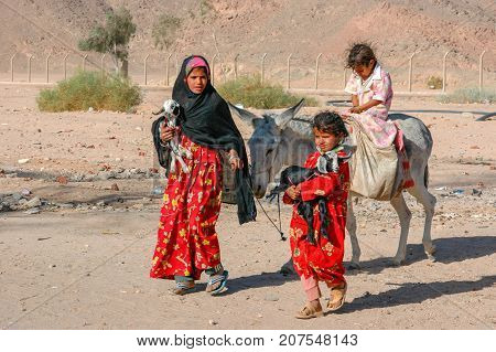 LUXOR EGYPT - Oct 31 2007: Girls Bedouin with donkey