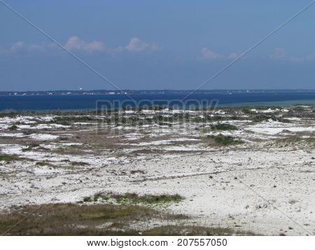 View on Santa Rosa Island protected seashore with sea oats in Pensacola Florida USA