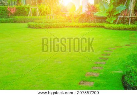 Blurred Pathway in garden, green lawns with bricks pathways, garden landscape design