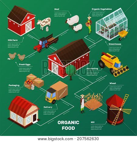 Organic farming products isometric icons flowchart with farm animals plants workers farmstead buildings and agricultural transport vector illustration