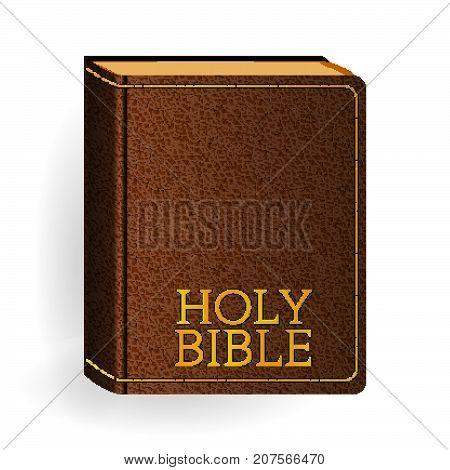 Bible_l_brown_10