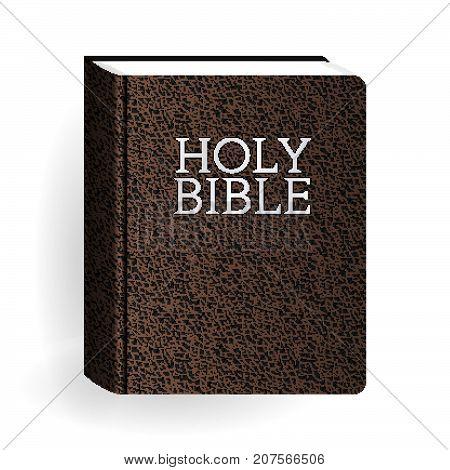 Bible_l_brown_11