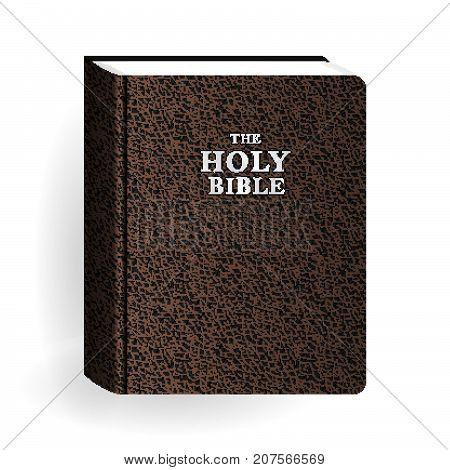 Bible_l_brown_12