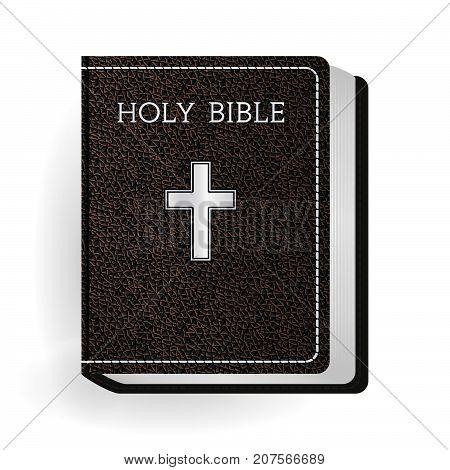Bible_l_brown_17
