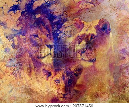 Lion family - lion, lioness and lion cub, on abstract structured background