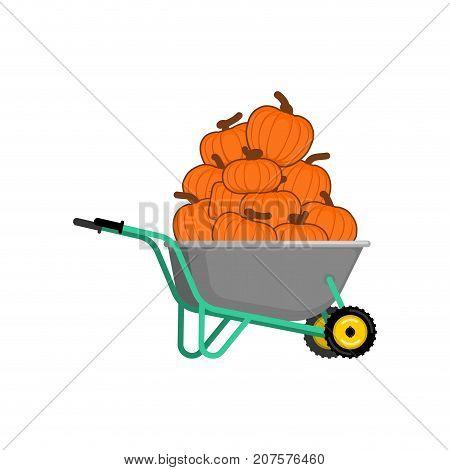 Wheelbarrow And Pumpkin. Vegetables In Garden Trolley. Halloween Harvest. Vector Illustration