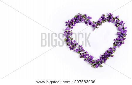 Beautiful fragile spring violets in the shape of a heart isolated on a white background close up. Greeting card