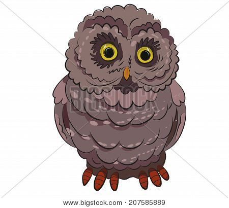 Funny wise owl cartoon image. Artistic freehand drawing. Authentic cartoon.