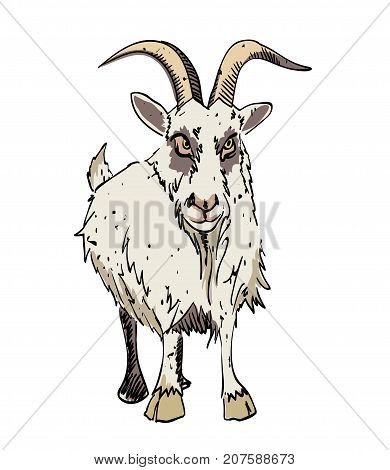 Grumpy goat cartoon image. Artistic freehand drawing. Authentic cartoon.