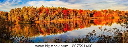 Changing colors in Autumn in New Brunswick, Canada