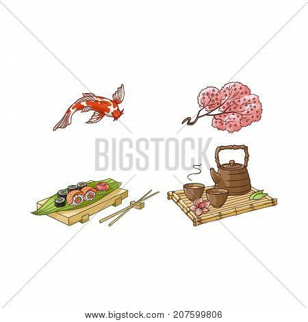 vector flat asian japan, china oriental symbols set. traditional koi carp fish, sakura branch. sushi with ginger, wasabi, kettle with caps for tea ceremony. Isolated illustration on a white background