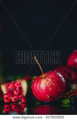 Red Miniature Apple Close-up In An Autumn Still Life With Fallen Leaves. Dark Food Photography With