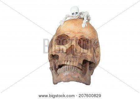 Halloween concept : Plastic human skeleton model climbing on skull model isolated on white background