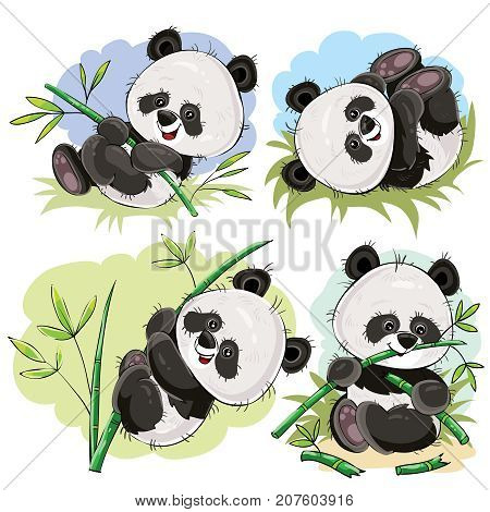 Funny panda bear baby playing on grass, climbing on bamboo stem, eating bamboo branch cartoon vectors set isolated on white background. Cute wild animal character for kids books illustrating, zoo ad