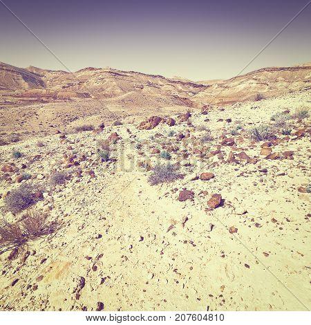 Rocky Hills of the Negev Desert in Israel at Sunset Instagram Effect