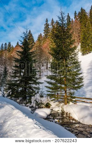 brook with cascade in winter spruce forest on a bright day. lovely nature scenery with lots of snow on hillsides