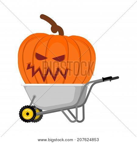 Wheelbarrow Halloween. Big Terrible Pumpkins. Vintage Pumpkin. Vector Illustration