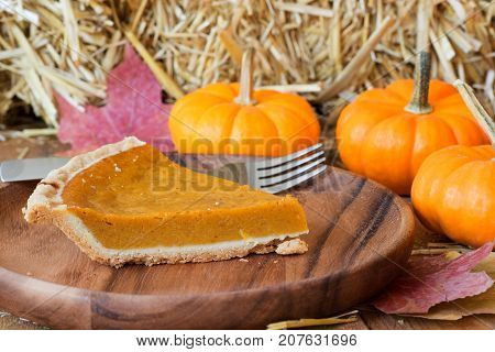Slce of pumpkin pie with pumpkins in background