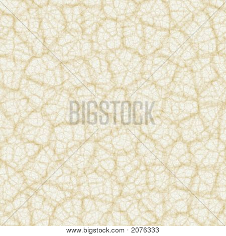 Jointless Biege Texture