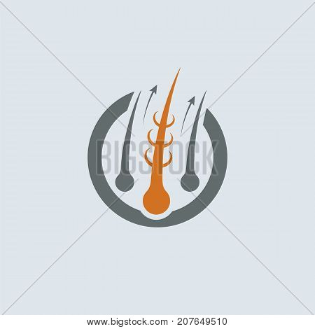 Strengthening of Hair Gray-Orange Vector Round Icon. Improve hair growth illustration