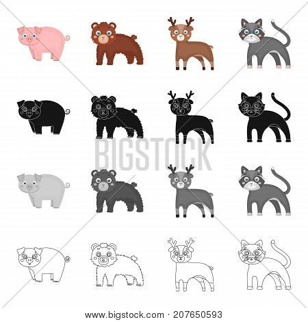 Piglet, animal, domestic, and other  icon in cartoon style. Toys, beast, plaything icons in set collection