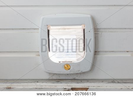Inside View Of A Regular White Cat Flap, Flap Closed