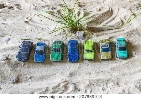 Racing Cars On The Track Lined Up In A Row. A Green Bush Grows From Behind.