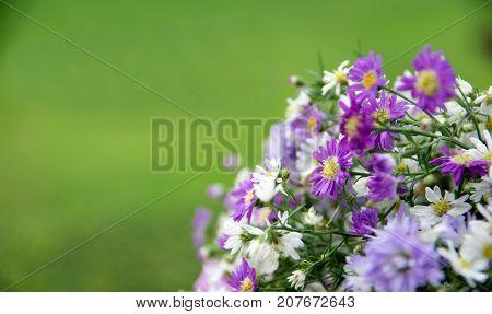 Flower Bouquet for congratulation of university graduate