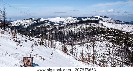 winter Silesian Beskids mountains in Poland with Skrzyczne and other hills snow and blue sky from hiking trail near Barania Gora hill