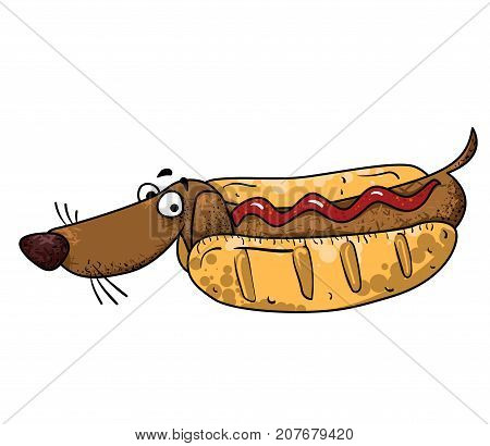 Sausage dog cartoon hand drawn image. Original colorful artwork, comic childish style drawing.