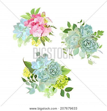 Stylish mix of spring bouquets vector design set. Pink hydrangea, blue echeveria succulent, various plants, flowers and green herbs. Rustic craft wedding bouquet. All elements are isolated and editable