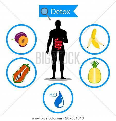 colon symbol on fruit and water with human body. Foods for cleansing your colon healthy concept