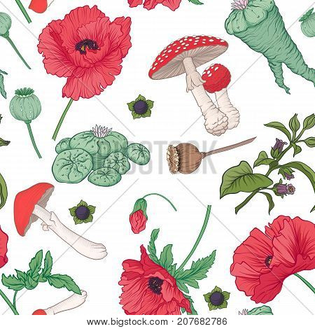 Seamless pattern and, background with red opium poppy and amanita mushroom and ophophora. Stock line vector illustration.