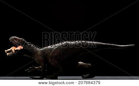 Carcharodontosaurus toy catches a smaller dinosaur close up on a dark background