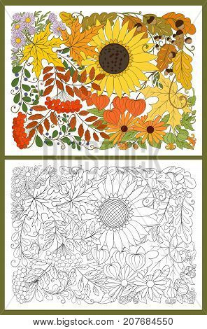 Composition with autumn flowers, leaves and plants. Stock line vector illustration. Colored and outline hand drawing coloring page for adult coloring book