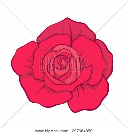 Red rose flower isolated hand drawn. Stock line vector illustration.