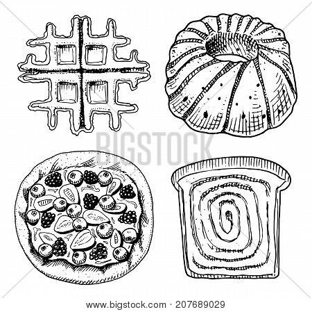 bread and pastry donut, Belgian waffles and sweet bun or fruit pie and toasts and charlotte. engraved hand drawn in old sketch and vintage style for label and menu bakery shop. organic food
