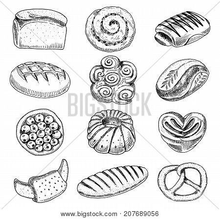 bread and pastry donut, long loaf and fruit pie. sweet bun or croissant, bagels and toasts. engraved hand drawn in old sketch and vintage style for label and menu bakery shop. organic food
