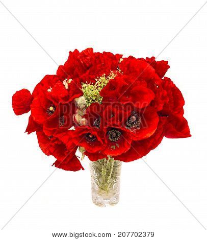 Red Wild Flowers Of Papaver Rhoeas In A Transparent Vase Close Up (corn Poppy, Corn Rose, Field Popp