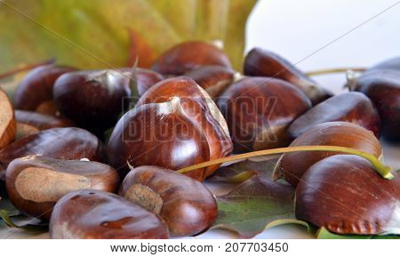 autumn fruits, chestnuts and grapes  composition with chestnuts and grapes, dried leaves, white background