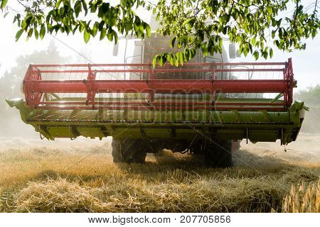green red working harvesting combine in a field of wheat under a tree front view