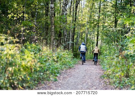 Two bicyclists ride in the autumn forest. Father with child