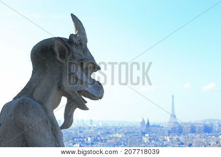 Aerial view of Paris City eiffel tower and Seine river shot on the top of Notre Dame Cathedral with stone demon gargoyle